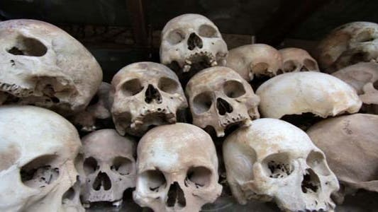 Cover Image for Skulls And Bones In Killing Field, Cambodia