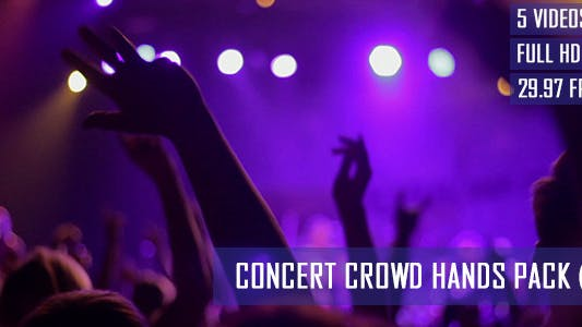 Thumbnail for Concert Crowd Hands (5 - Pack)