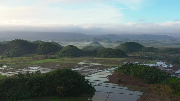 Aerial View of Rice Plantation,terrace, Agricultural Land of Farmers. Tropical Landscape with