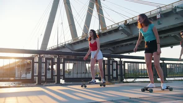 Cover Image for Young Friends Riding Skateboards on the Waterfront - Sunset