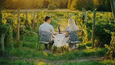 A Family of Farmers Is Admiring Their Vineyard