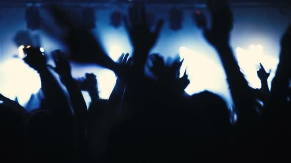 Thumbnail for Party People Having Fun At Music Concert