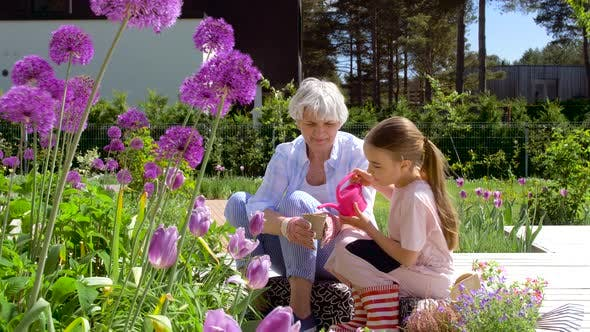 Thumbnail for Grandmother and Girl Planting Flowers at Garden 20