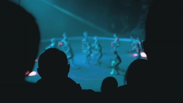 Silhouettes of Spectators in a Circus Watching a Show in the Circus Arena