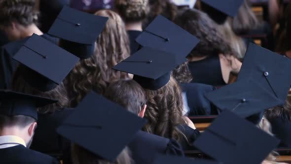 Thumbnail for Back View of Graduating Students in Academic Caps, Diploma Awarding Ceremony