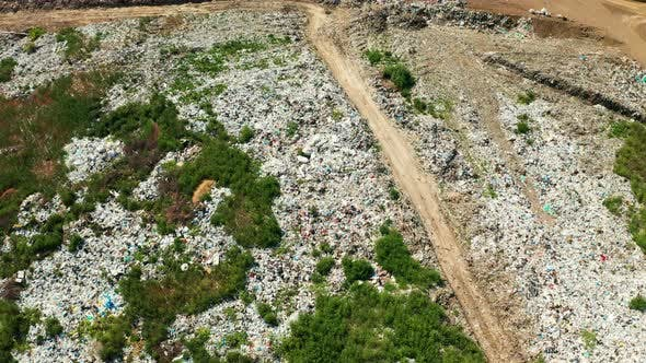 Thumbnail for Aerial View of Dump in Forest in Pollution Concept