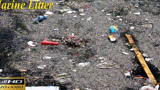 Thumbnail for Marine Litter