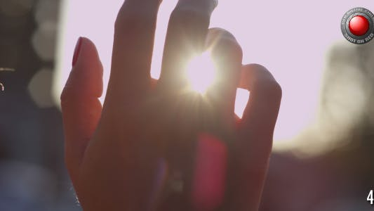 Thumbnail for Hand in the Sun 3