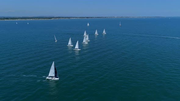 Thumbnail for Yachts in a Sailing Race