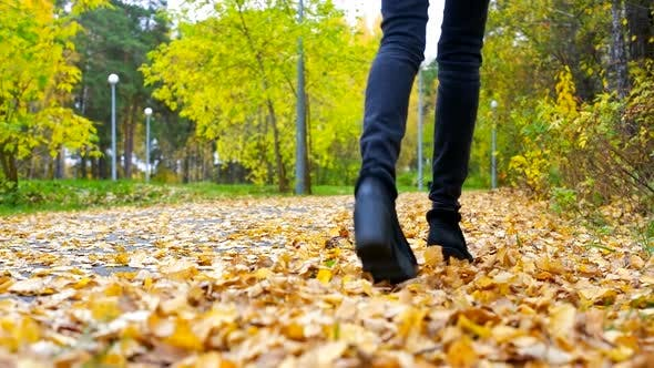 Thumbnail for Slim Woman Legs in Black Jeans Kick Dry Yellow Foliage