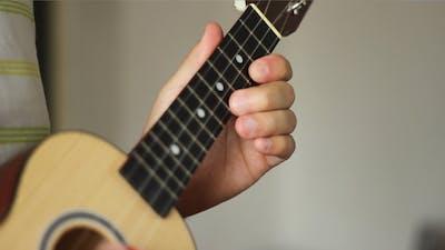 Ukulele Musical Instrument