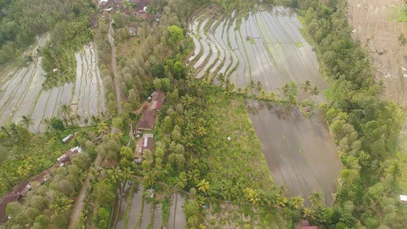 Thumbnail for Tropical Landscape with Agricultural Land in Indonesia