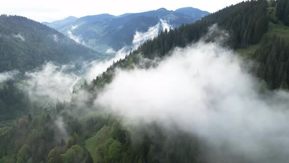 Thumbnail for Ukraine, Carpathians: Fog in the Mountains. Aerial