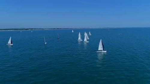 Summer Sailing Regatta at Sea Aerial View