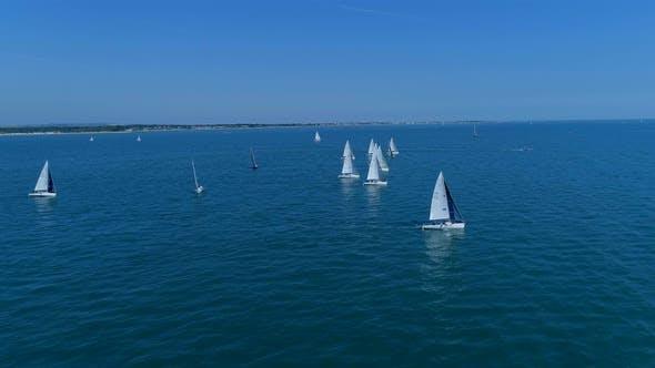 Thumbnail for Summer Sailing Regatta at Sea Aerial View
