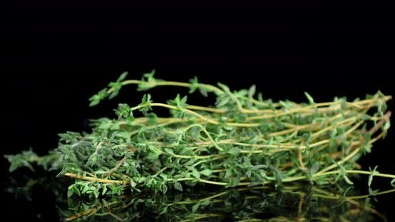 Bunch of Fresh Thyme Rotates Slowly.