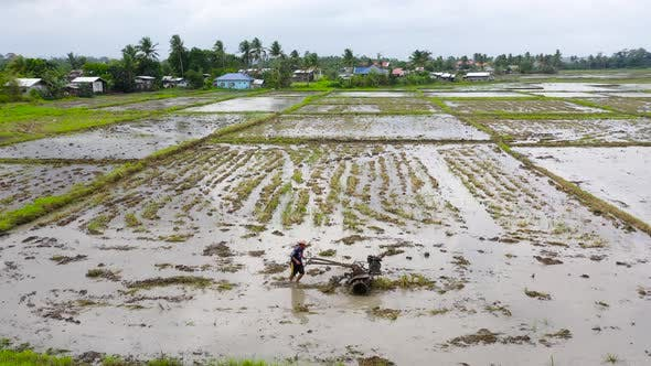 Thumbnail for Farmer Using Walking Tractor Plowing in Rice Field To Prepare the Area To Grow Rice.