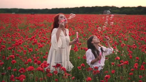 Little Girl with Her Mother Playing with Soap Bubbles in Flowering Field of Poppies Slow Motion