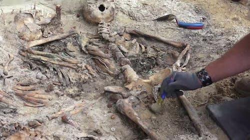 Massengrab oder archäologische Ausgrabungen 6