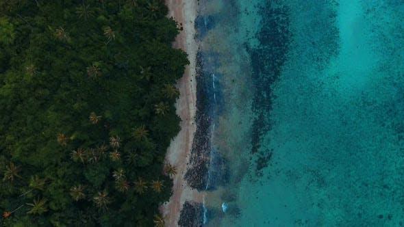Thumbnail for Ocean Coast