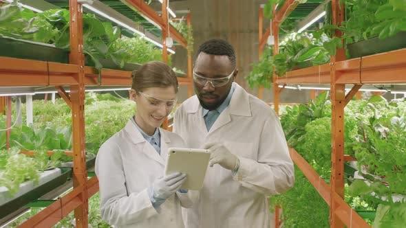 Portrait Of Multi-Ethnic Botanists In Vertical Farm