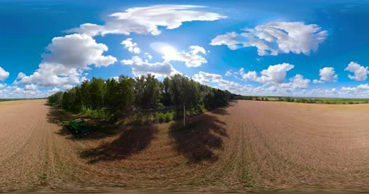 Combine Harvester on Wheat Field VR360