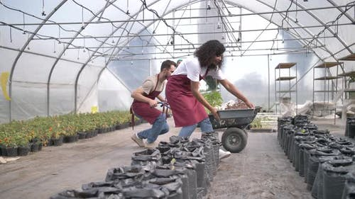 Diverse Farm Workers Unloading Cart with Plants