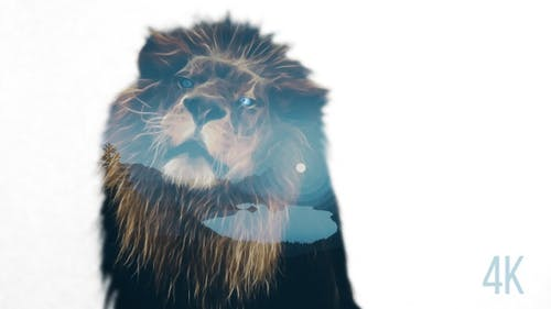 Lion Double Exposure