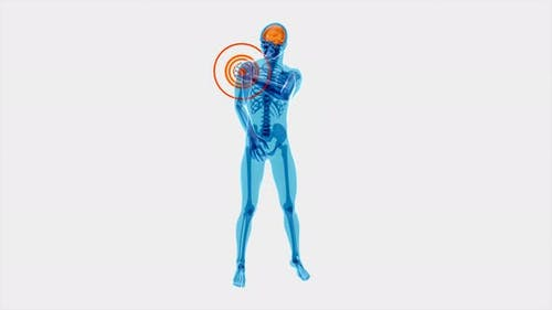 4K Anatomie Konzept eines Schulterschmerzes