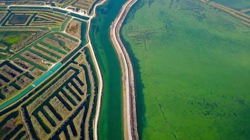 Asphalt Road Divides Lagoon with Algal Bloom and Polders