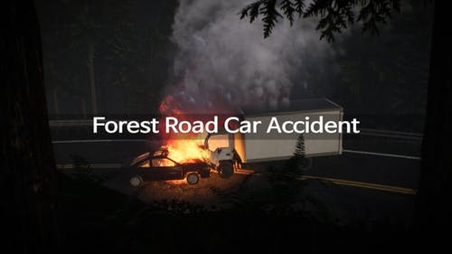Forest Road Car Accident