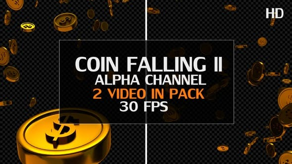 Thumbnail for Coin Falling