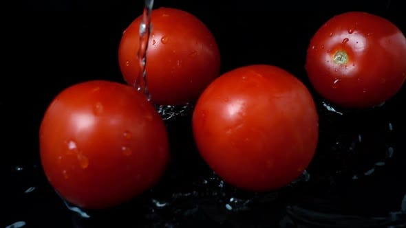 Thumbnail for Water Flows Tomatoes 2