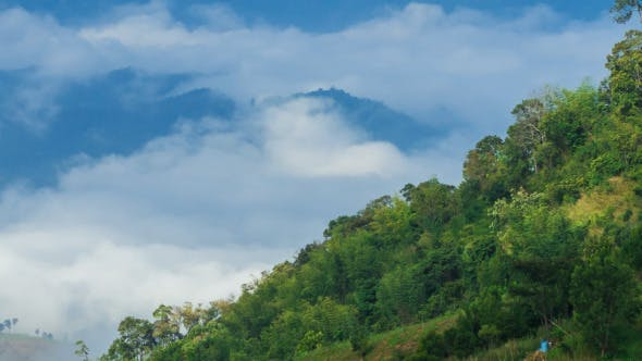 Thumbnail for Cloud Kissing Mountain