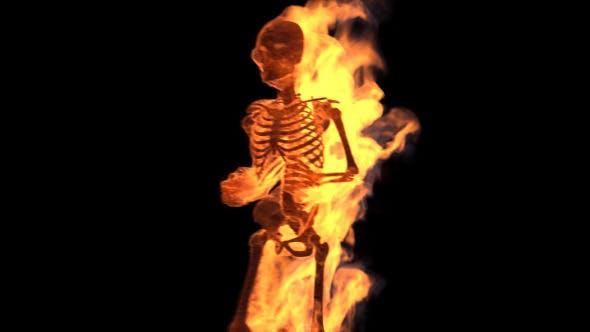Fire Skeleton (6-Pack)