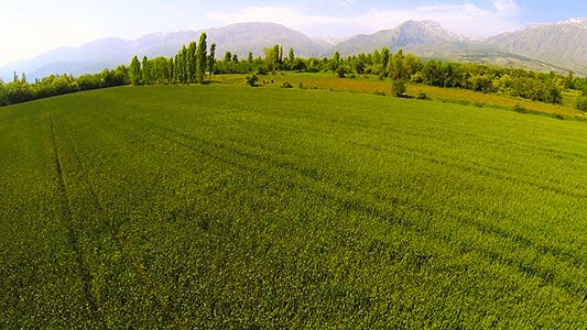 Thumbnail for Agricultural Farm-land