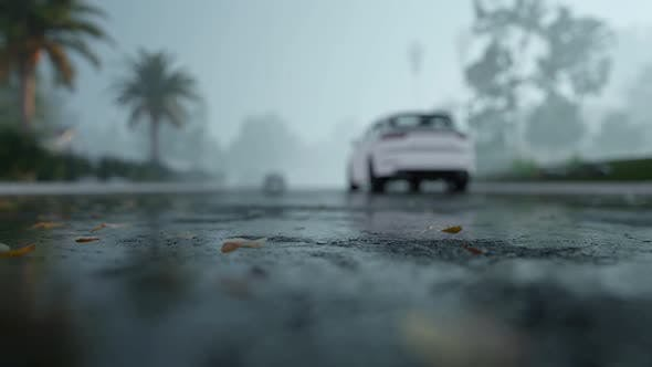 Cover Image for Drive Car In Rain On Asphalt Wet Road