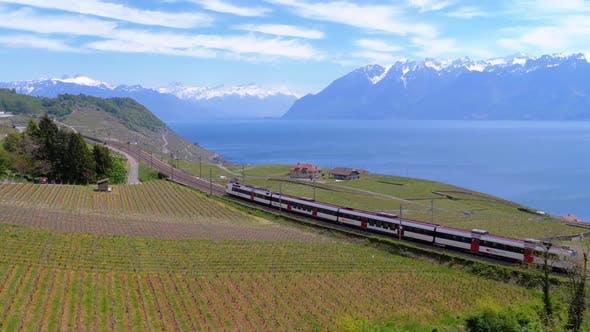 Thumbnail for Swiss Train Moves Along a Scenic Railway on a Hillside Near Lake Geneva Against of Alps. Switzerland