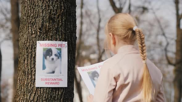 Thumbnail for A Child with a Poster About His Missing Dog. Pet Search