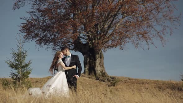 Thumbnail for Newlyweds. Caucasian Groom with Bride Near Beautiful Autumn Tree. Wedding Couple