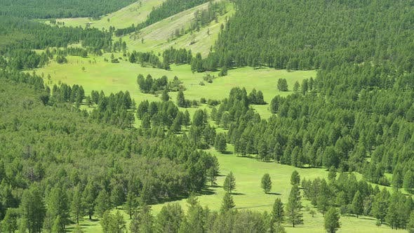 Green Meadows in The Sparsely Wooded Between Forest Covered Valleys
