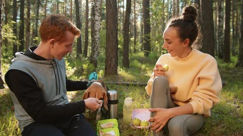 Happy Couple Petting Dog on Outdoor Summer Picnic