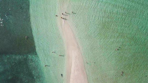 Thumbnail for White Sand Tropical Beach