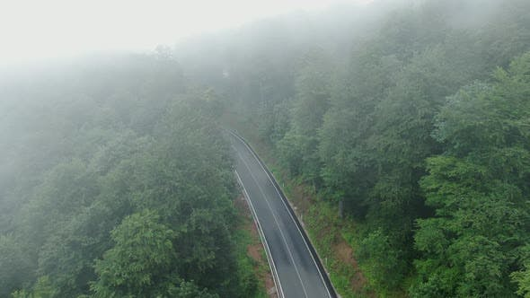 Thumbnail for Mountain Road Through the Forest Aerial