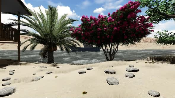 Thumbnail for Tropical beach with palm trees and snow