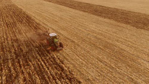 Cultivation of the Agricultural Field After Harvesting