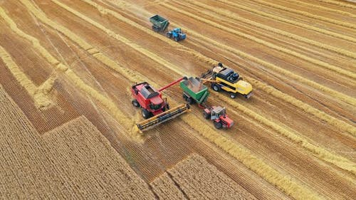 Agricultural machinery on the golden field
