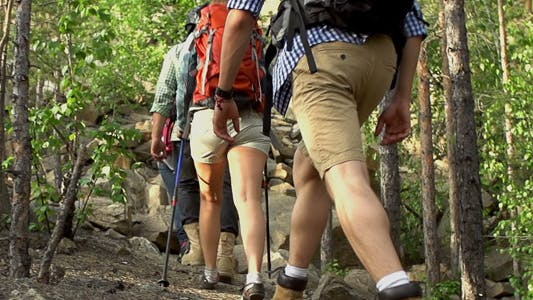 Thumbnail for Group of Backpackers