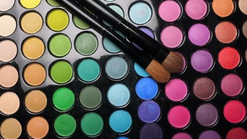 Professional Makeup Eyeshadows Palette and Brushes for Makeup Artist