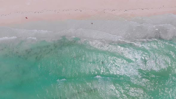 Tropical Beach, Top Down Aerial View of Tides Waves Break on Exotic White Coast